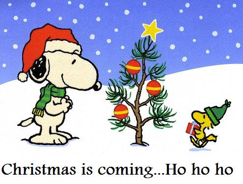 Snoopy Christmas Images.Snoopy Christmas Cartoons Snoopy Xmas Pictures Bridges